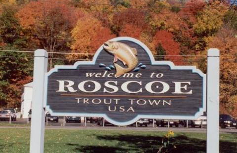 Is roscoe america 39 s ultimate fishing town watershed post for Roscoe ny fishing
