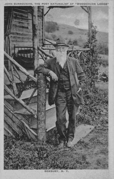 "burrough welcome essay A 1908 health article titled ""walking in the catskills"", dated five years prior to burrough's essay, offers several suggestions for impressive hiking and."