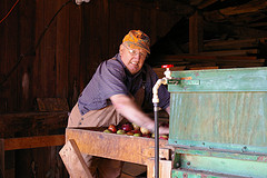 Bob Hubbell loads apples onto a conveyor belt on the top flood of his cider press barn : Julia Reischel