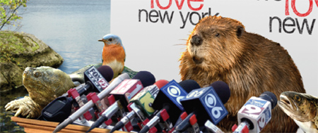 We quit: New York State animals resign in budget protest