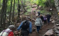 Stairs at Kaaterskill Falls