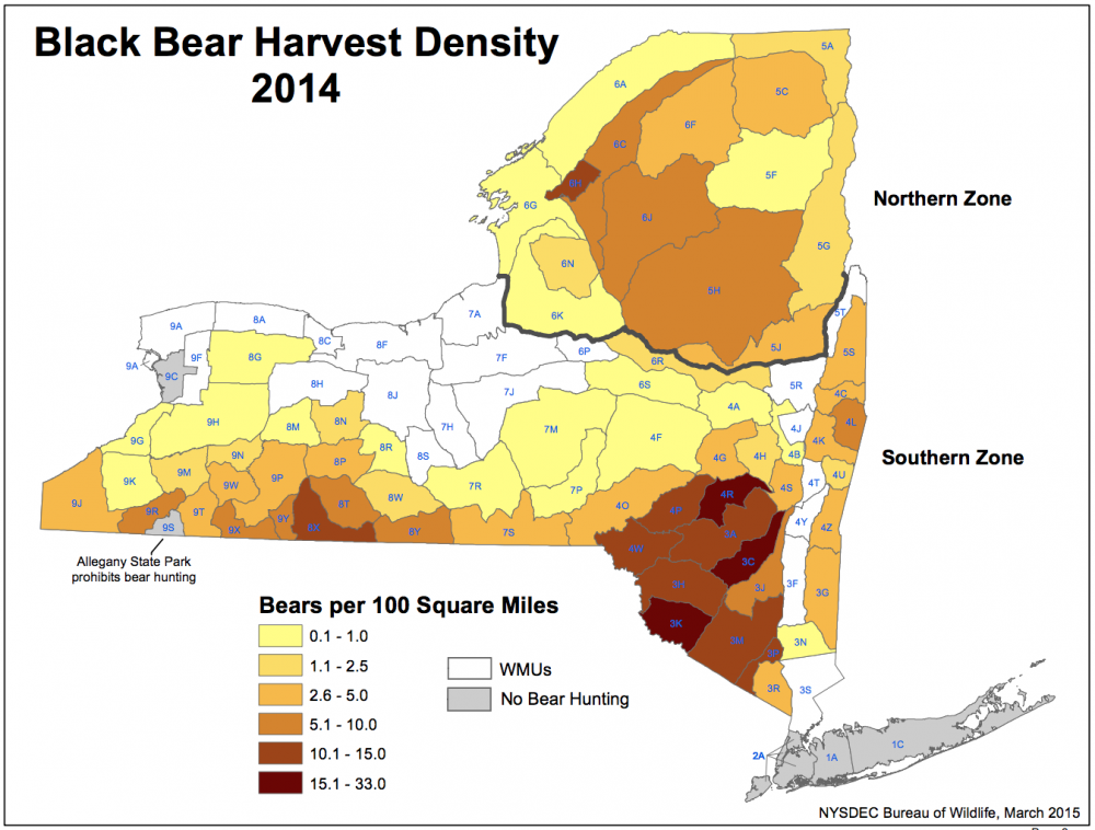 Early Season Leads To Record Bear Hunt In Southern New